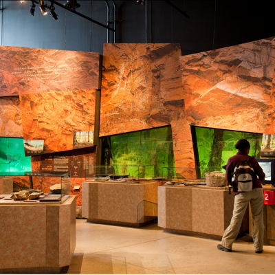 Inside view of Joggins Centre. People looking at fossils surrounded by a rock-like display