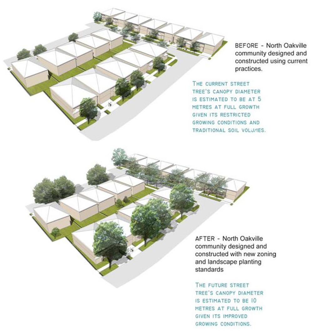 Neighbourhood Community Tree Planting 3-D visuals